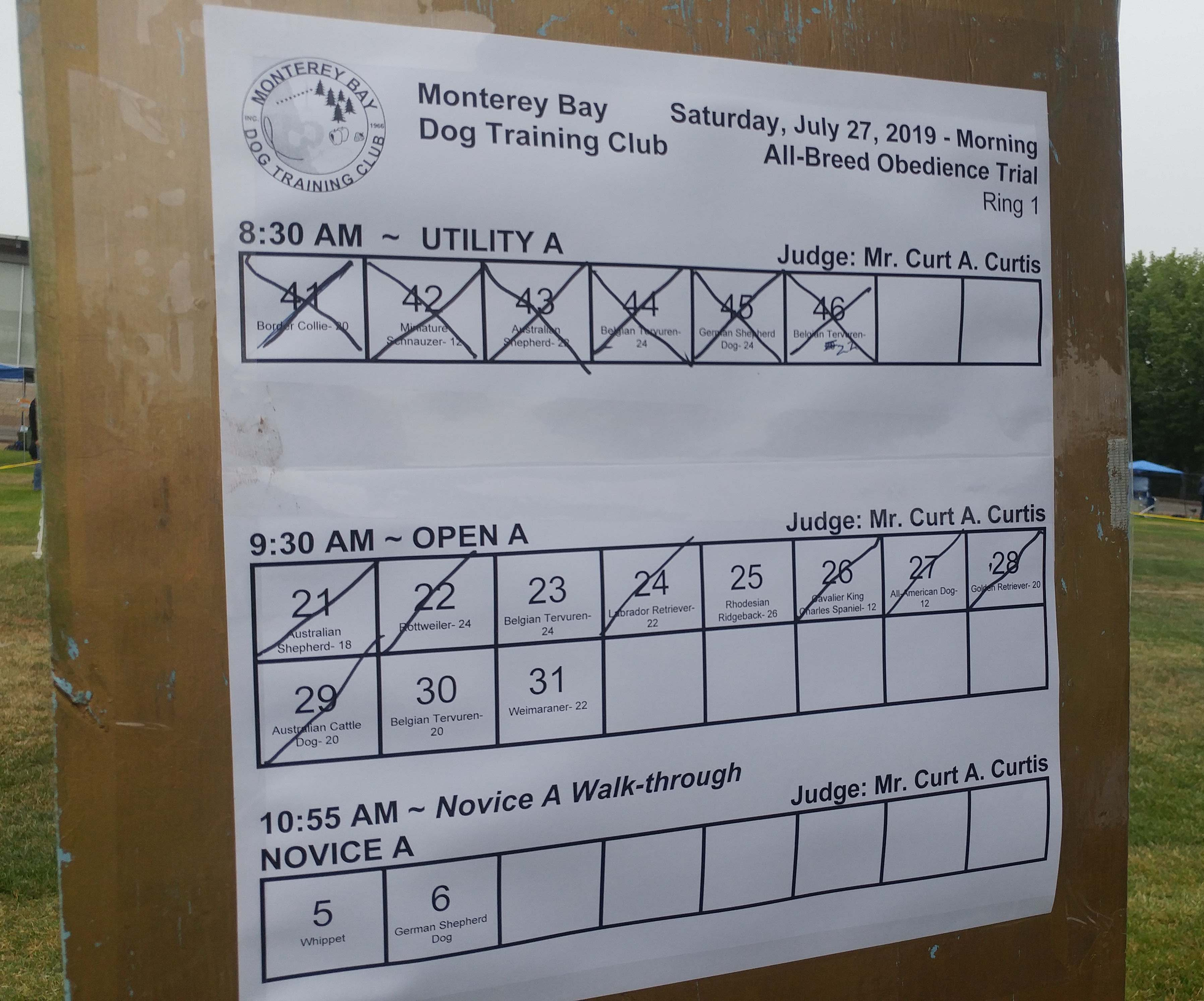 Photo of schedule that shows what dogs have checked in and which have already gone